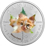 1 Oz Silber Maple Leaf Farbe 2017  Cute Kittens Maine...
