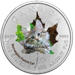 1 Oz Silber Maple Leaf Farbe 2017  Cute Kittens Norwegian...