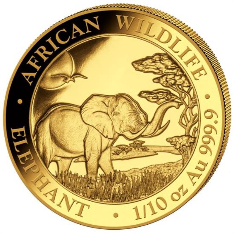 1 10 Oz Gold Somalia Elefant 2019 Bu 128 60 Aurinum Online
