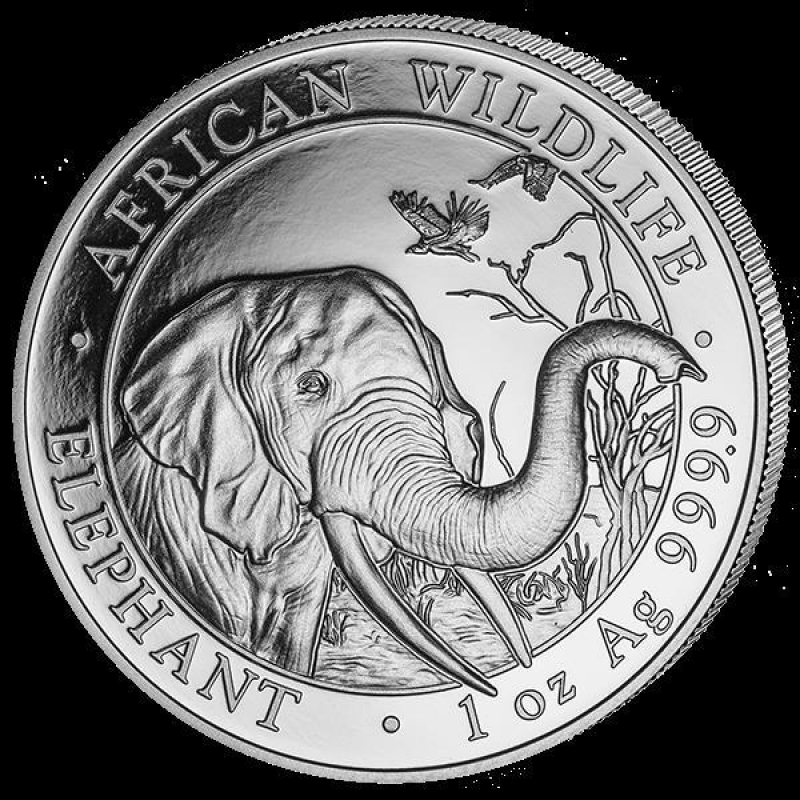 1 Unze Silber Somalia Elefant 2018 Bu 1813 Aurinum Online M