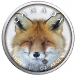 1 oz Silver Canadian Maple Leaf 2019  Canadas Wildlife (2) - Red Fox Canada