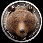 1 Oz Silber Maple Leaf Farbe 2019  Canadas Wildlife (3) - Grizzlybär Kanada