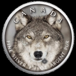 1 oz Silver Canadian Maple Leaf 2019  Canadas Wildlife (5) - Wulf Canada