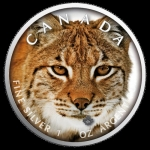 1 oz Silver Canadian Maple Leaf 2019  Canadas Wildlife...