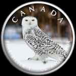 1 Oz Silber Maple Leaf Farbe 2021 On the Trails of Wildlife (4) - Schnee - Eule Kanada