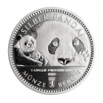 1 Oz Silver Panda 2018 Berlin Mint in coincard
