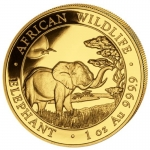 1 Oz Gold Somalia 100 Sh Elephant Coin 2019
