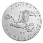 1 Unze Silber Canada Birds of Prey - Bald Eagle 2014...
