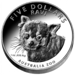 2018 $5 High Relief Red Panda Ravi 2018 Australia...