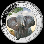 1 Oz Silver Somalia 100 Sh Elephant Coin Colorized 2021