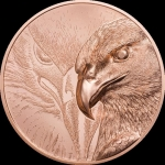 250 Togrog  Majestic Eagle 2020 Mongolei  50 g Copper Proof