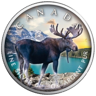 1 Oz Silber Maple Leaf Farbe 2021  On the Trails of Wildlife (1) - Elch Kanada